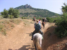 конные прогулки